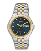 Citizen EW3124-58L